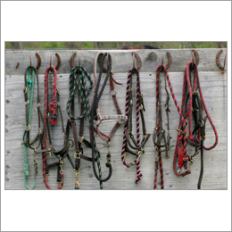 Braided Lead Ropes