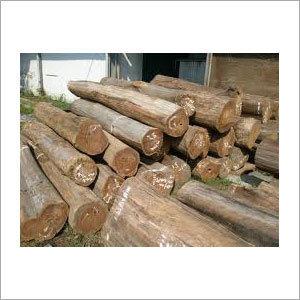 Mersawa Wood Logs