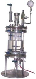 Fermenter Bioreactor Insitu Sterlization