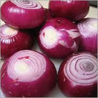 Red Fresh Onions