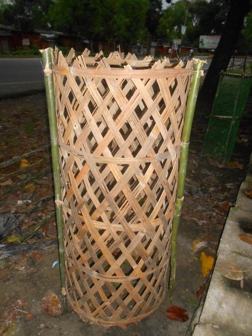 Tree Guards Bamboo