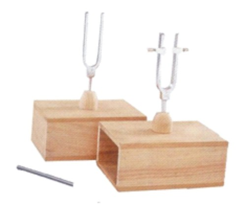 TUNING FORKS SET, DIFFERNTIAL AND SYMPATHETIC