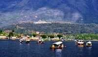 LTC 80 Srinagar Tour Package (4N/5D)