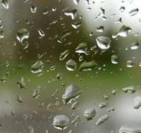 Wet Style Designer Glass