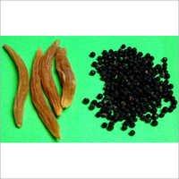 Nepali Shatavari Seed