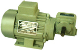 FHP Geared Motors