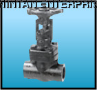 Forged Carbon Steel Globe Valve