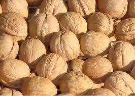 Walnut In-Shell