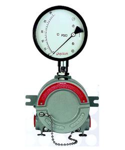 EX-200DPG: Differential Pressure Switch
