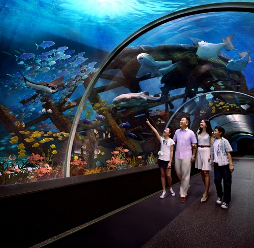 Sentosa Island With Optional S E A Aquarium Singapore