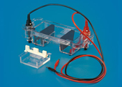 Mini Submarine Electrophoresis Unit