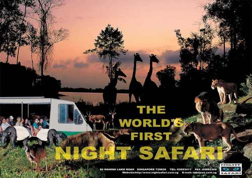 Singapore Night Safari - with Hotel transfers & optinal Dinner