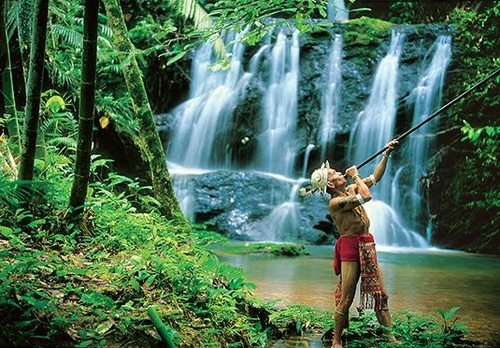 A Day in Rainforest, Kuala Lumpur