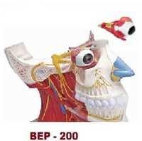 Media Section Head Model ( BEP-200 )