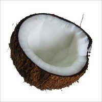 Fresh Shell Coconut
