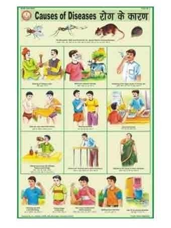 Health And Hygiene Charts