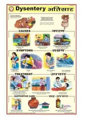 Human Diseases Charts