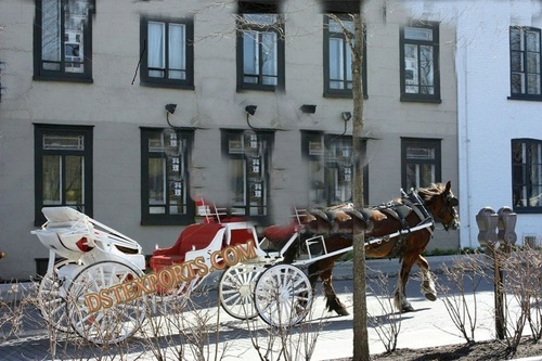 Red And White Wedding Carriage