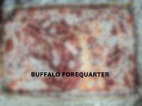 Buffalo Forequarter