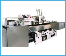 Horizontal Continuous Cartoning Machine
