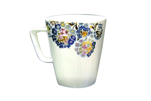 Porcelin 6 Pcs Mug Set
