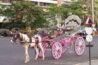 Mumbai Victorian Baghi
