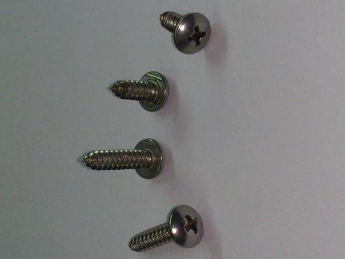 SS Philips Head Screw