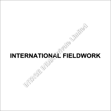 International Fieldwork