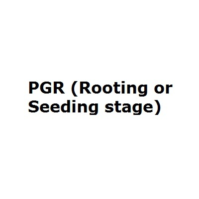 PGR (Rooting or Seedling stage)