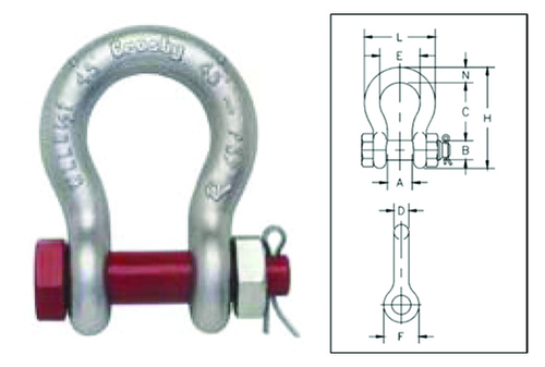 Bow Shackle Nut bolt type