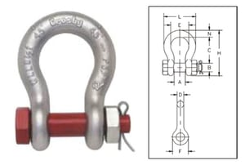 Bow Shackle Nut bolt type