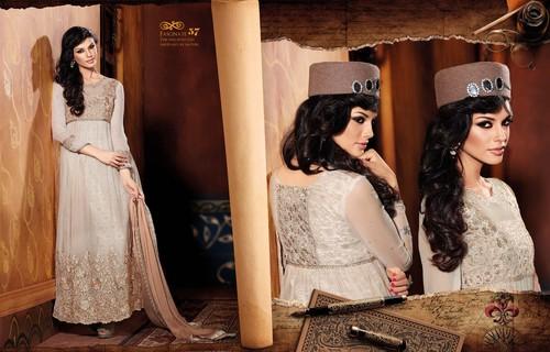 Beige Velvet-Net Anarkali Suit