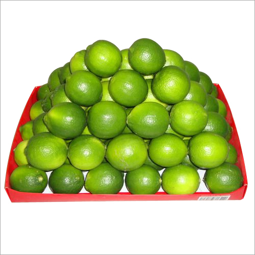 Fresh Seedless Lime