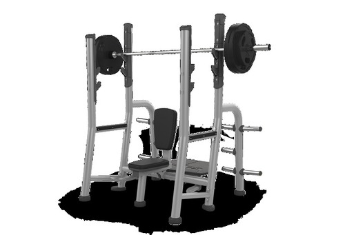 Shoulder Press Front Rair