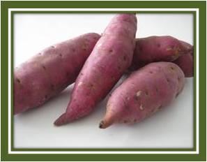 Sweet Potato Cubes / Powder