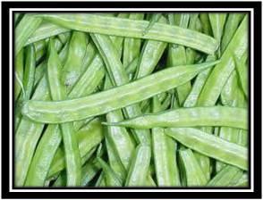 Cluster Beans (Guvar) Pieces