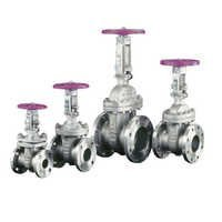 L&T Stainless Steel Gate Valves