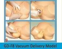 Vacuum Delivery Model