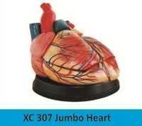 Jumbo Heart