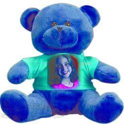Teddy Bear with T Shirt