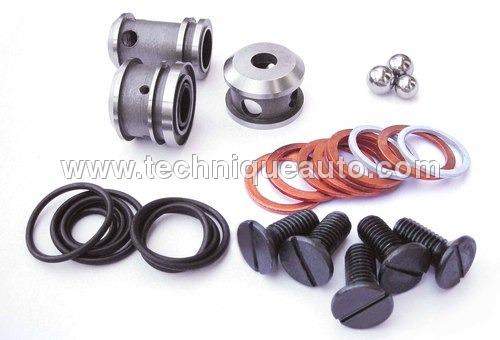 Distributor Repair Kit