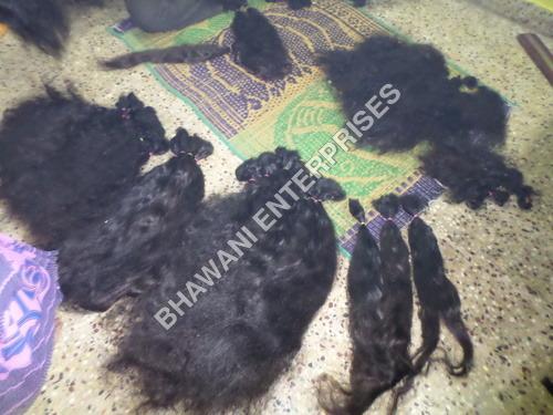 Human Hair Exporter