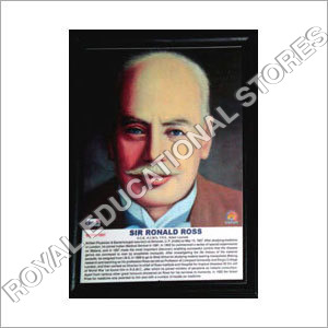 Mathematician Picture Frame