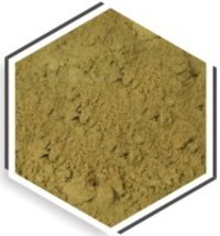 Moringa Fruit Powder