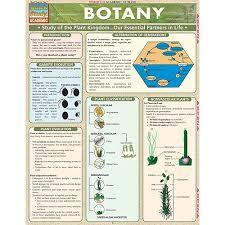 Botany Chart