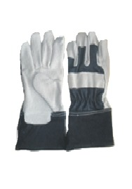 Banned gloves