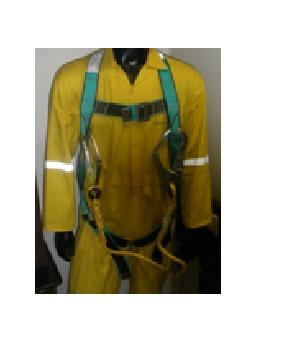 Full Body Harness  as per IS 3521  Model