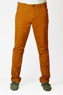 Copper Brown PAnt