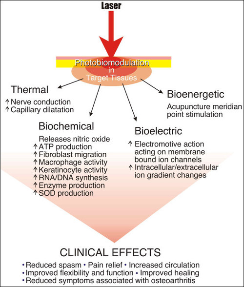 Laser Clinical Effects