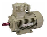Flameproof Electric Motors